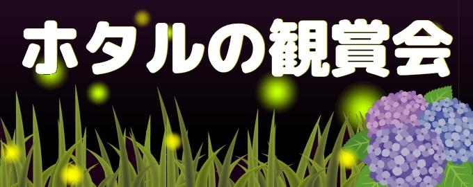 hotaru_top.jpg
